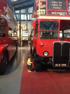 Sophia bus